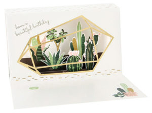 Cactus Terrarium Delighted Pop-Up from Up With Paper